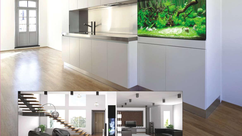 Aquarium Designs & Ideas
